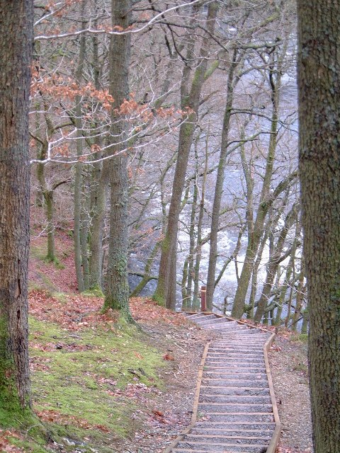 Woodland footpath to Keswick near river Greta