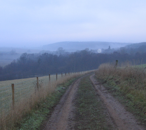 Looking North West to Wath Wood on a misty January day