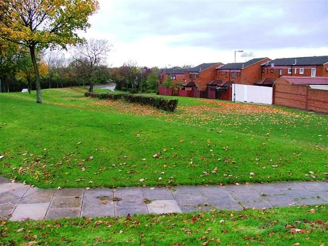 Fringe of Housing Estate, Hemlington
