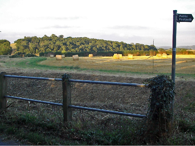 Field beside lane,  Longney  and view to Monks Hill