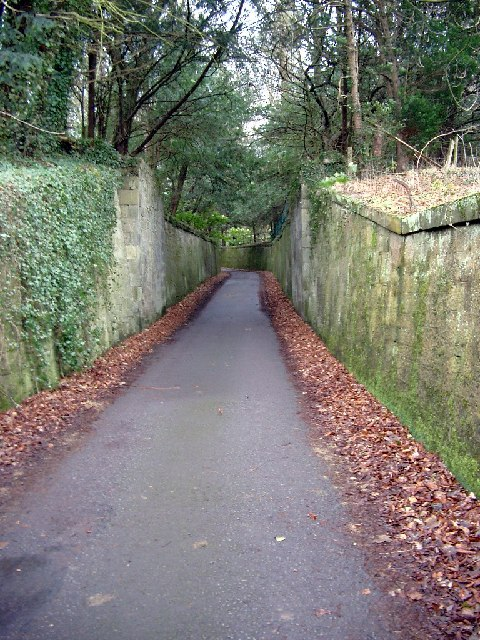 Walled lane in Dalzell Park