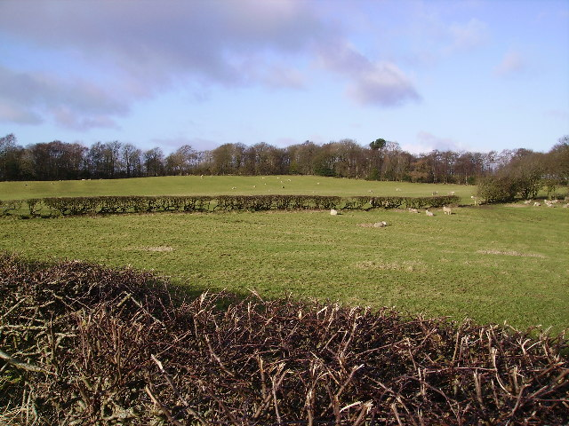 Farmland Aughton