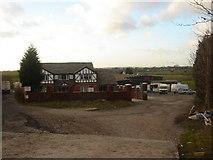 SD6806 : Burns Animal Food Manufacturer by Margaret Clough
