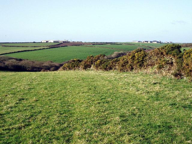Fields at Bosanketh