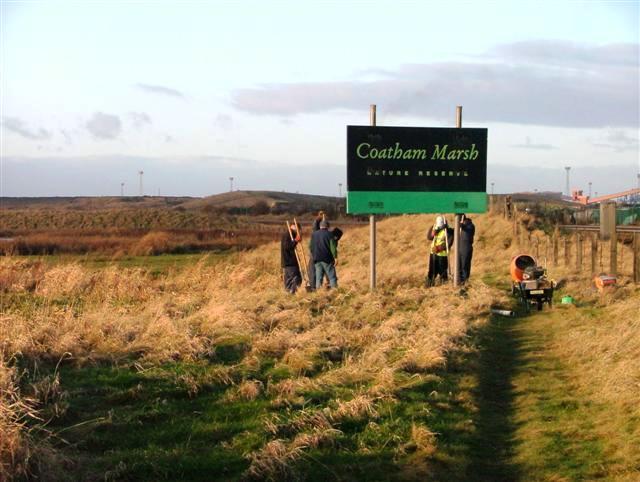 Coatham Marsh Nature Reserve