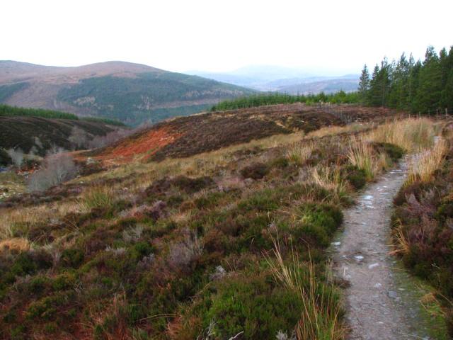 Ben Wyvis path