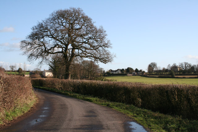 Cullompton: lane between Champerhaies and Westcott