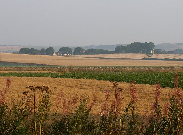 Farmland by St Monans
