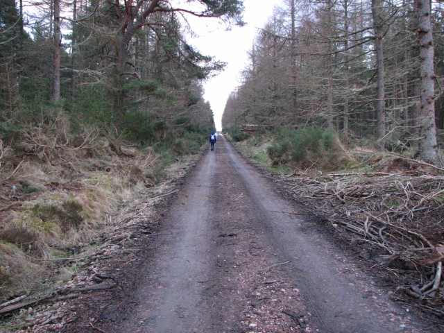 Black Isle cycle trail