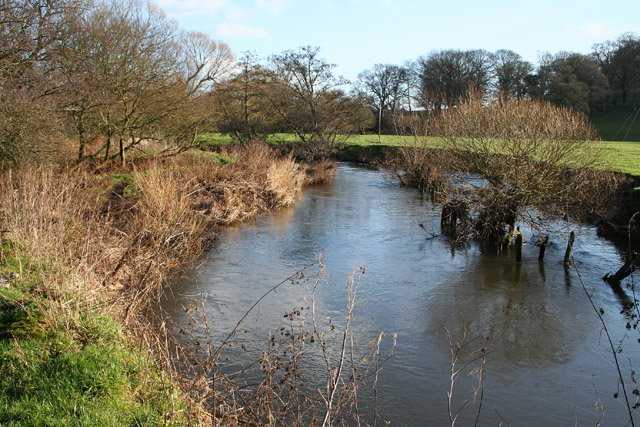 Silverton: the river Culm below Ellerhayes Bridge