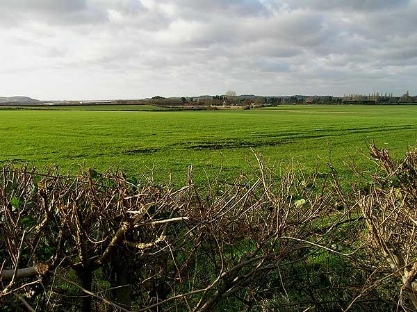 View towards Ruddington from Mill Lane