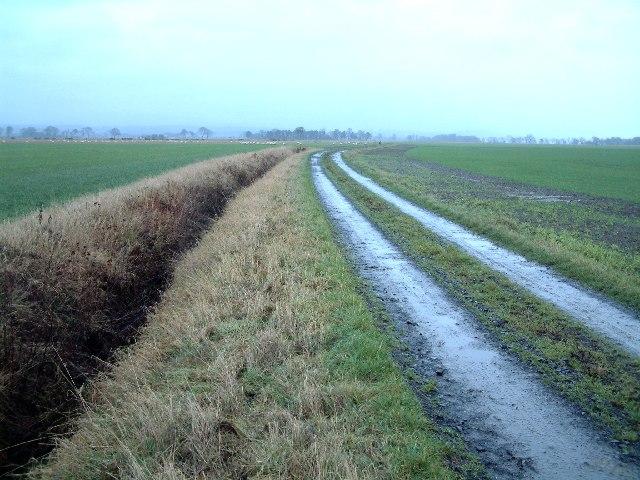 Farm track between Powgavie and Kingston Farms