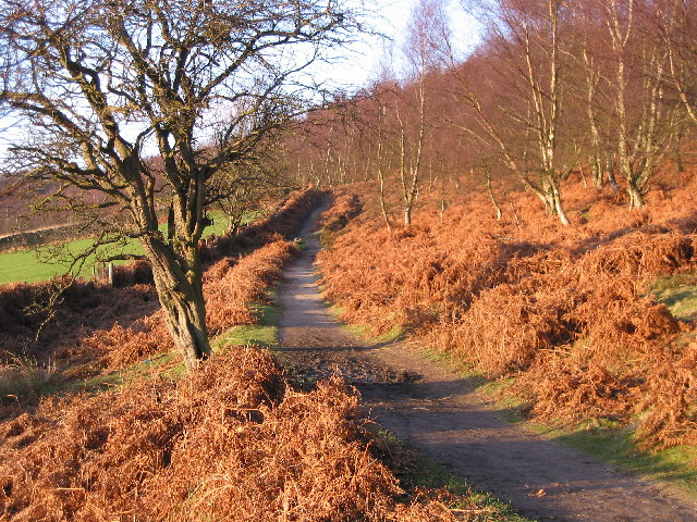 Below Birchen Edge