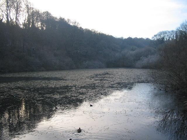 Bryn Celyn pond