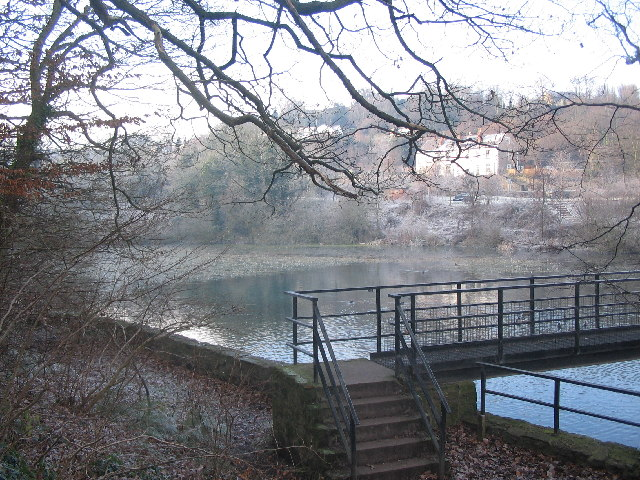 Mill pond at Bryn Celyn