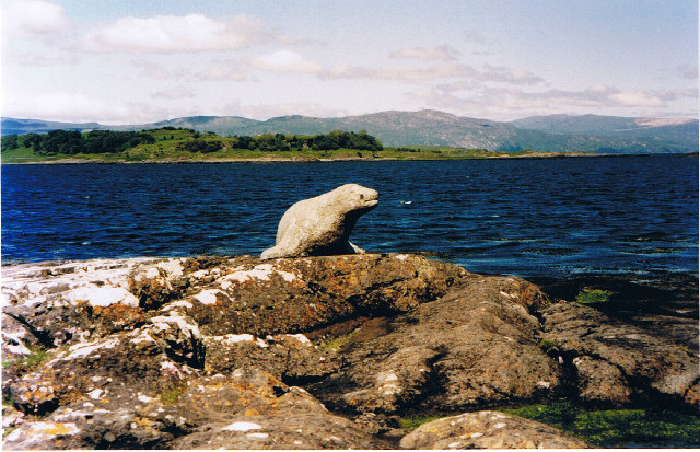 Stone seal at Grass Point