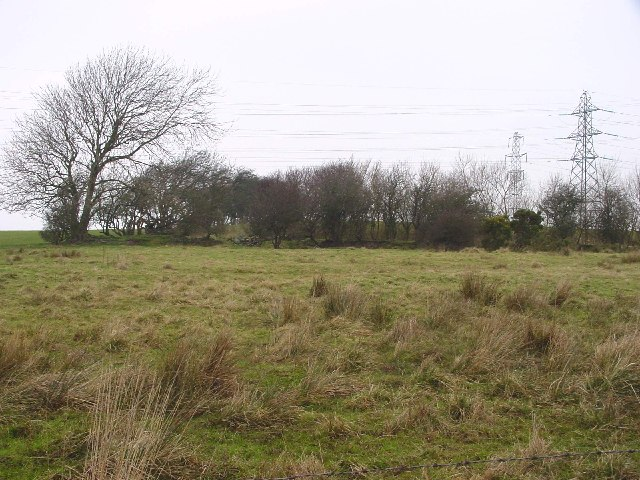 Ruins, Wood House, Broughton Moor