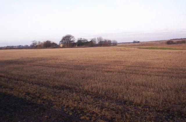 Farmland, Netherton