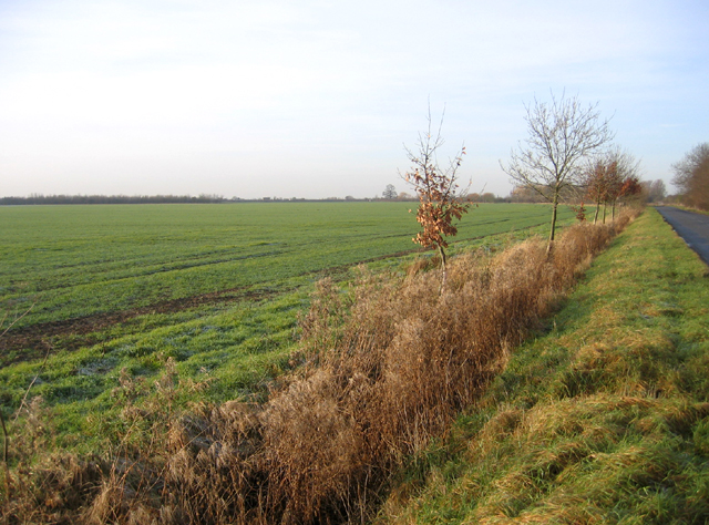 Farmland view, Wendy, Cambs
