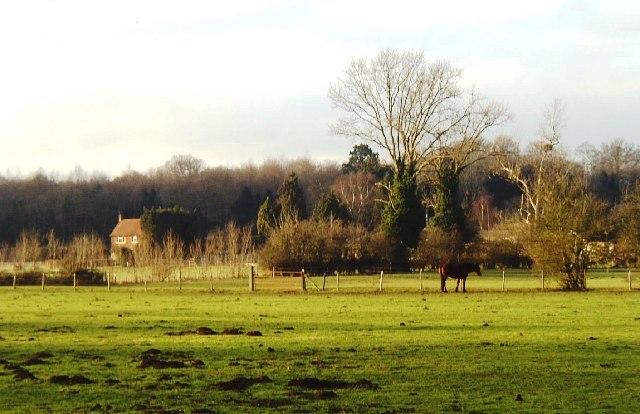 Meadowland,  Burnham (Bucks)