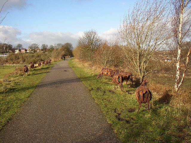 'Swaledale Flock', Spen Valley Greenway, Liversedge