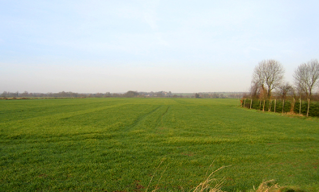 Cam valley, Guilden Morden, Cambs