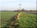 TL2945 : Flecks Lane, Guilden Morden, Cambs by Rodney Burton