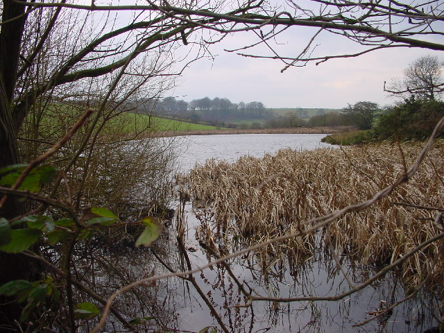 Moorthwaite Lough