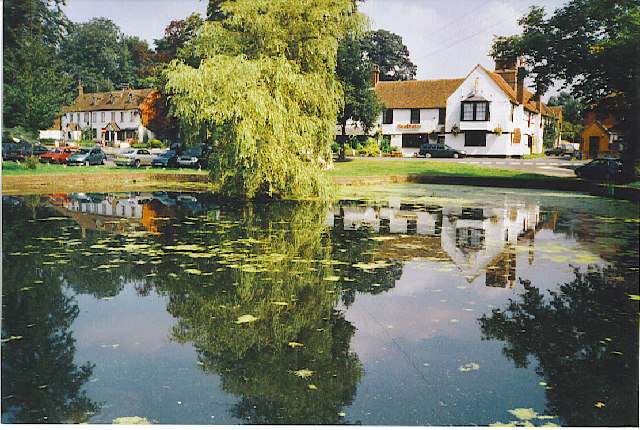 Godstone Village Pond