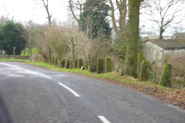 Stonygate Lane