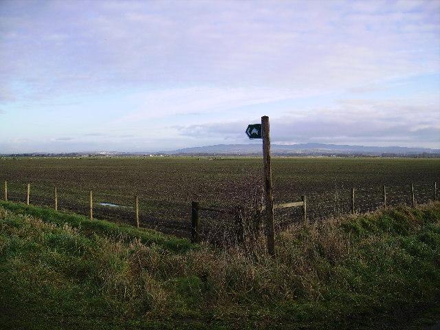 Bridleway Moss Edge