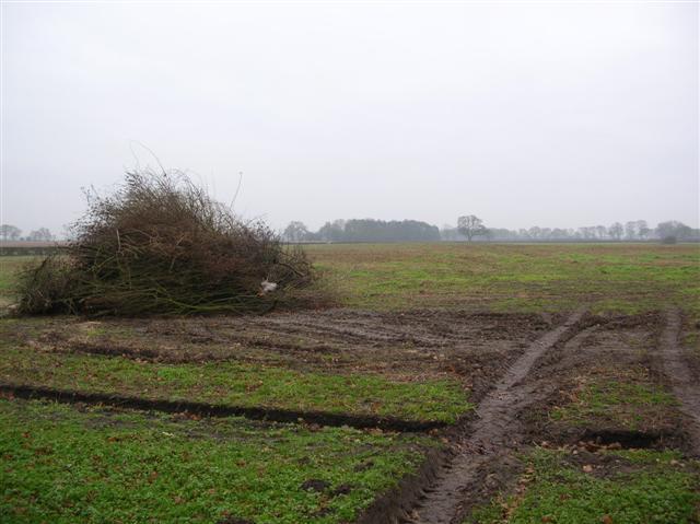 Earswick Moor