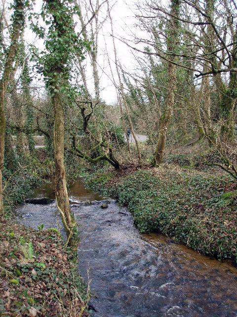 Mill stream at Crean Mill