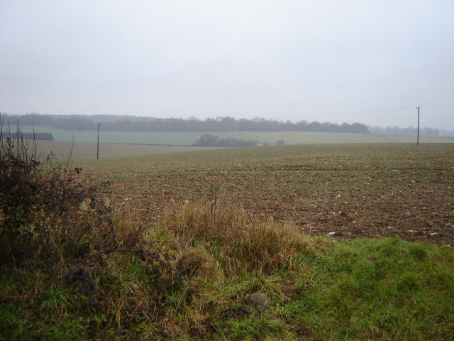 Open Fields near Bentworth
