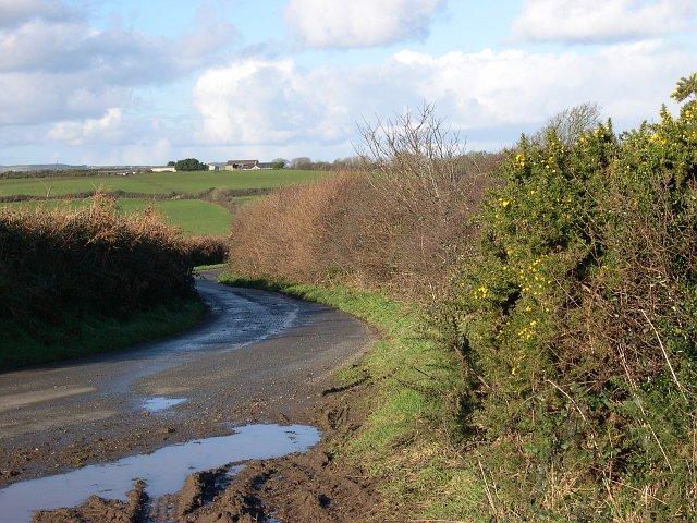 Country Lane near Treven Farm