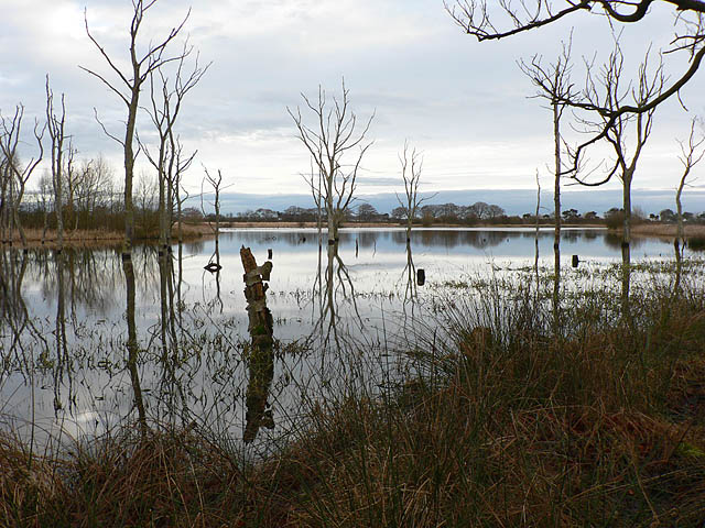 Un-named pond