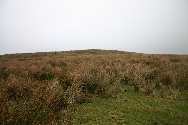 Rough Pasture on Ponsonby Fell