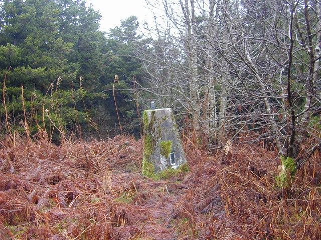 Trig pillar S3118 near Hendrefoelas