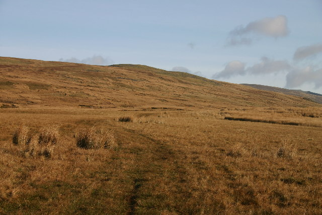 Bridleway Across Tongue How