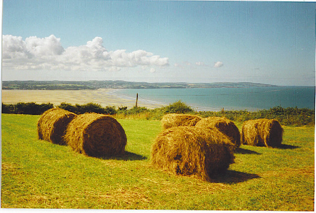 Harvest near Llanddona