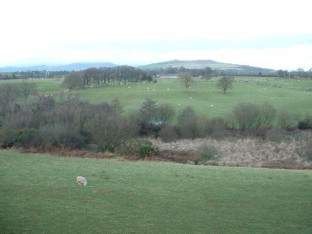 Farmland near Y Ffor