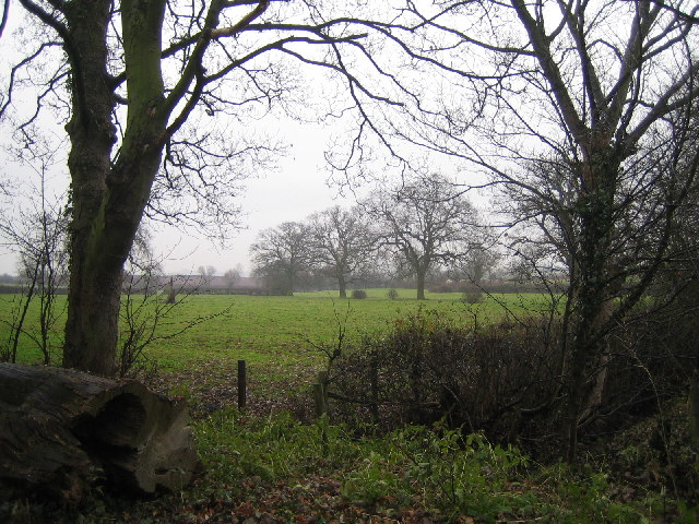 Farmland south of Diseworth