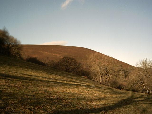 Farmland near Trentishoe Manor