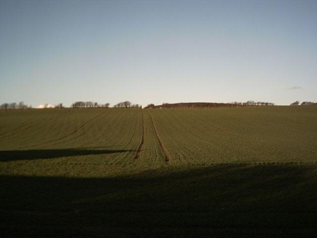 Farmland near Stony Cross