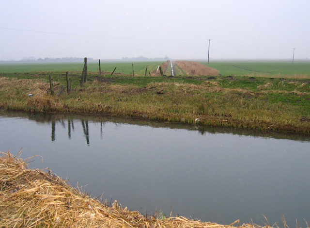 Pinchbeck South Fen, Lincs
