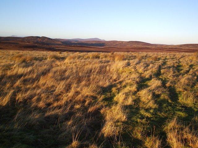 Looking NE towards Loch Dubh-ghruanach