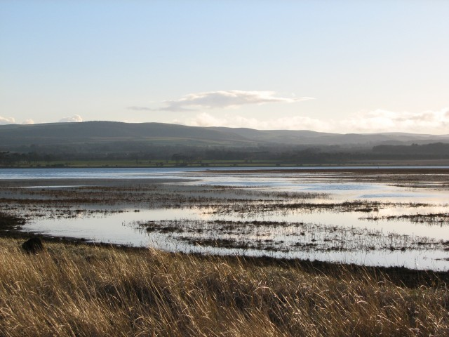 Tyne Estuary