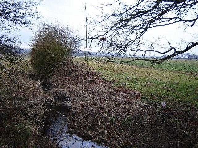 Stream near Farringdon