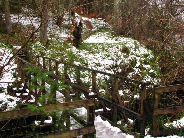 Footbridge, Black Rock Gorge