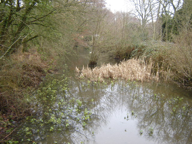 Natley Brickworks Arm, Basingstoke Canal